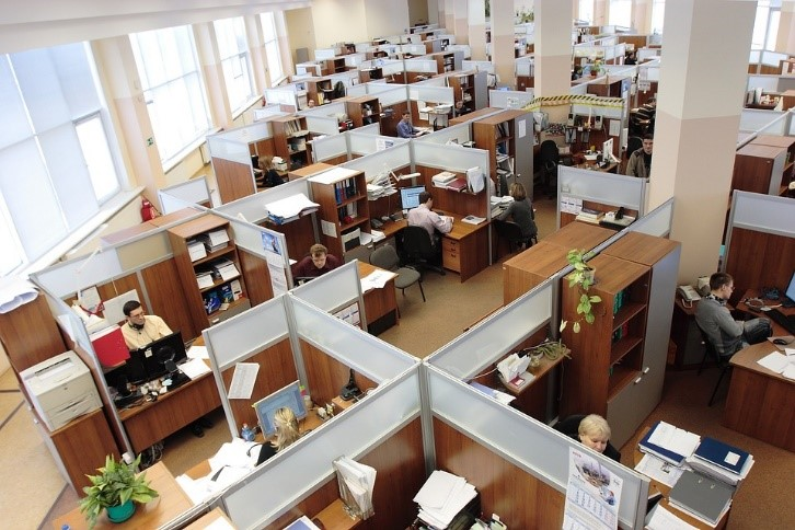 bird's-eye view of office cubicles